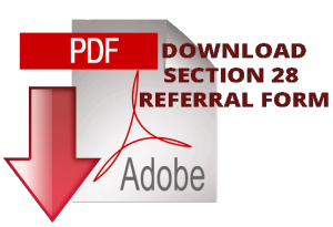 AdobePDF SECTION 28